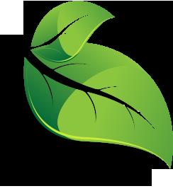 2016-leaf-icon-leaf